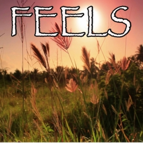 "Afficher ""Feels - Tribute to Calvin Harris, Pharrell Williams, Katy Perry and Big Sean"""