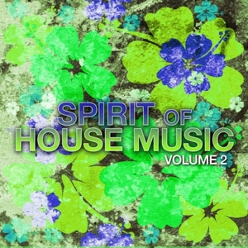 "Afficher ""Spirit of House Music, Vol. 2"""