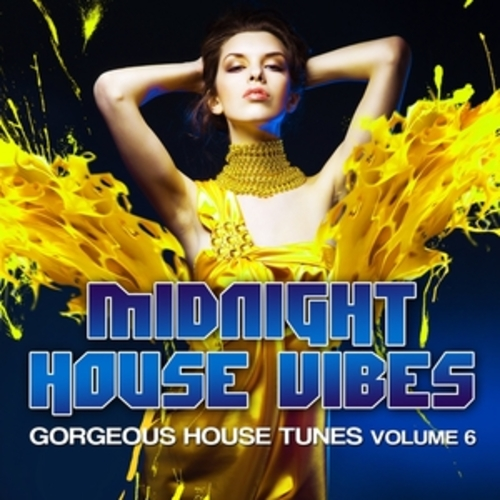"Afficher ""Midnight House Vibes, Vol. 6"""
