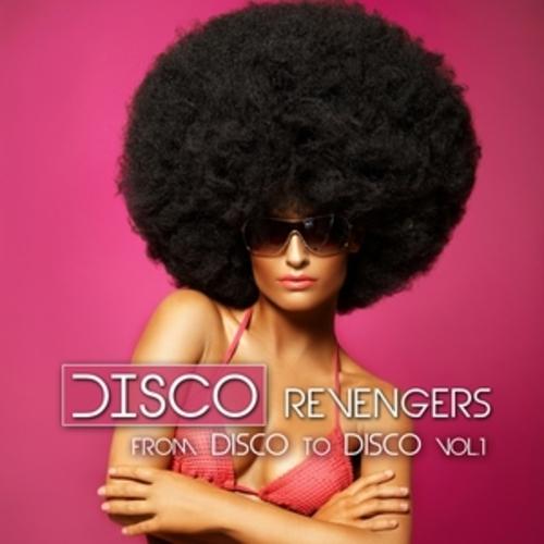 """Afficher """"Disco Revengers"""""""