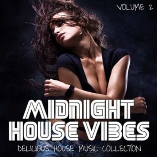 "Afficher ""Midnight House Vibes, Vol. 2"""
