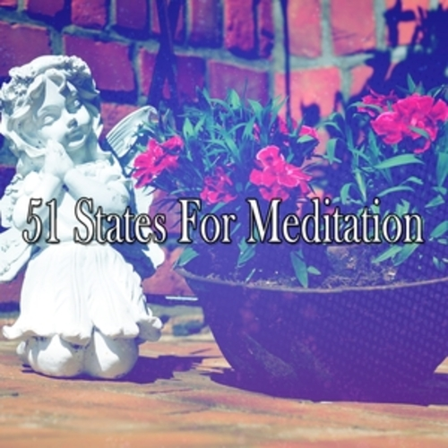 "Afficher ""51 States For Meditation"""