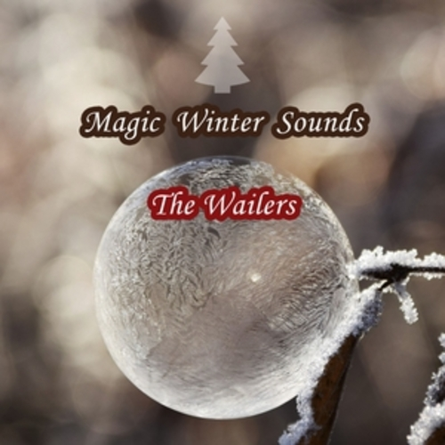 "Afficher ""Magic Winter Sounds"""
