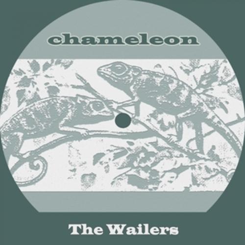 """Afficher """"Chameleon"""""""