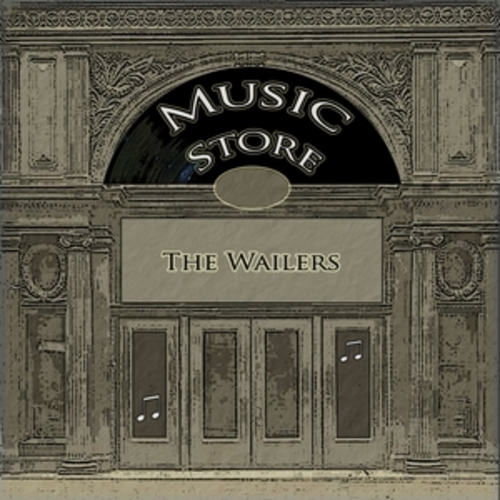 """Afficher """"Music Store"""""""